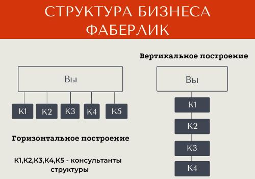 Бизнес Фаберлик структура
